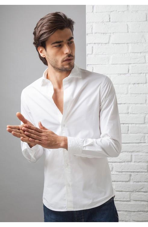 Man Shirt in Cotton C650_D...